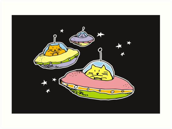space cats by Matt Mawson