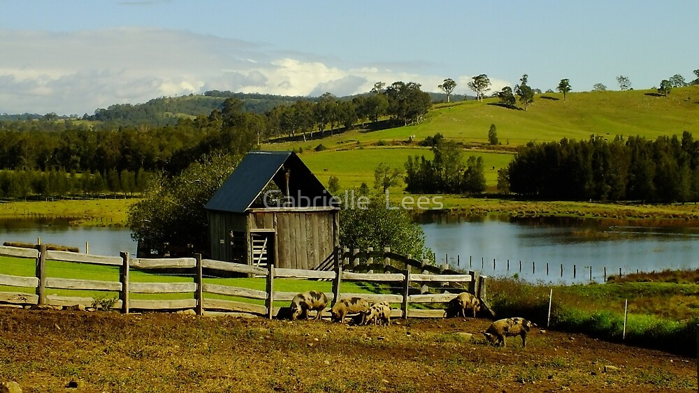 Tocal Homestead  by Gabrielle  Lees