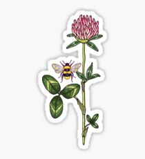 aromatic red clover Sticker