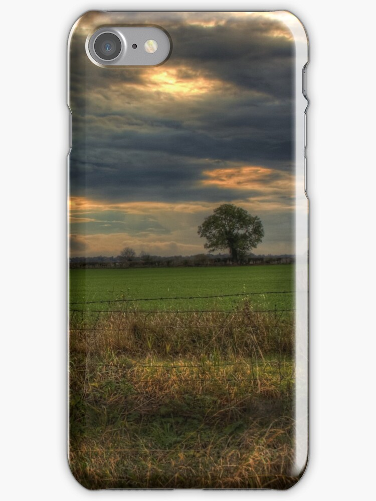 Countryside at dusk by Vicki Field
