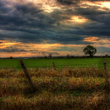 Countryside at dusk by InspiraImage