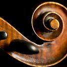 Fiddlehead by Liz Grandmaison