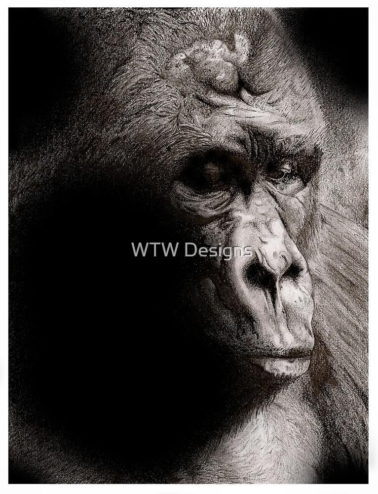 Gorilla by WTWalters