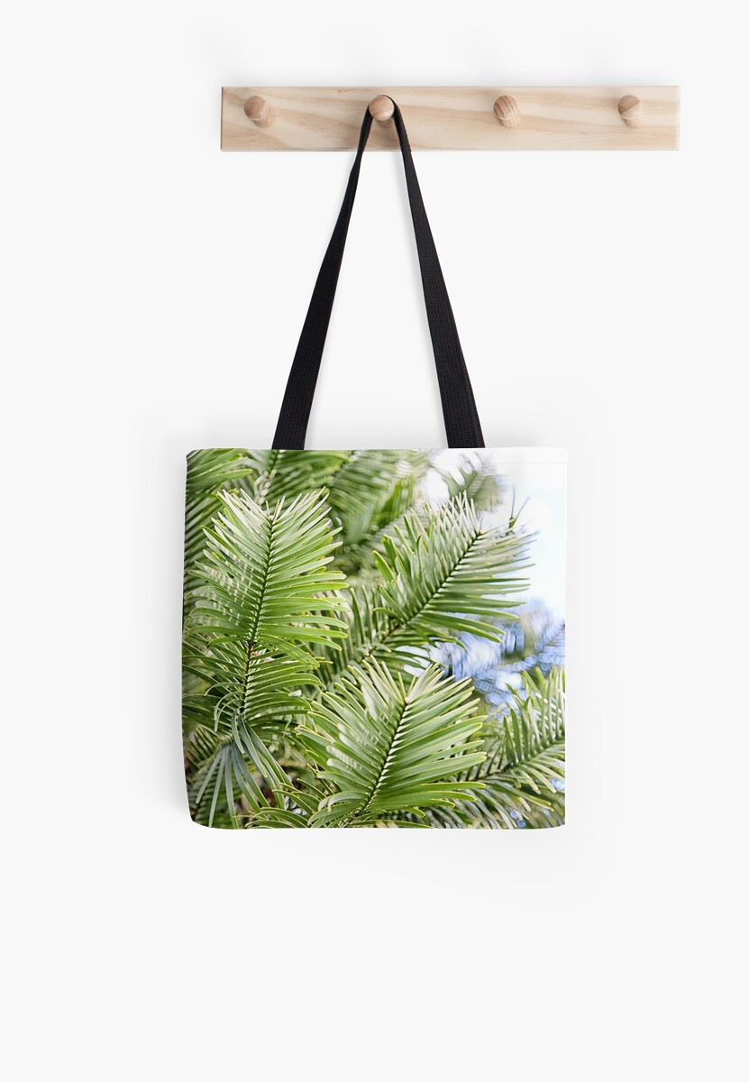 137 Wollemi Pine - an ancient plant by Shirley Steel