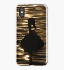 Swan Sunset iPhone Case