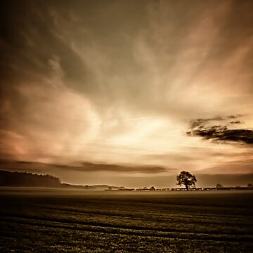 Sepia Sunset  by InspiraImage