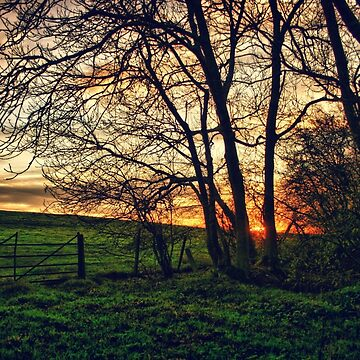 English Countryside Sunset HDR  by InspiraImage