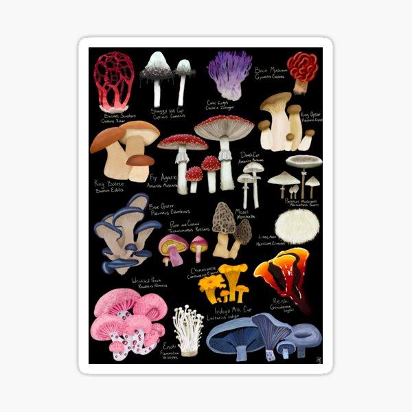 Mush love Sticker