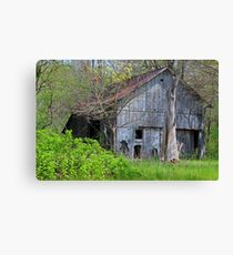 Unsettling Transitions Canvas Print