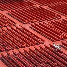 Red Chairs by Dobromir Dobrinov