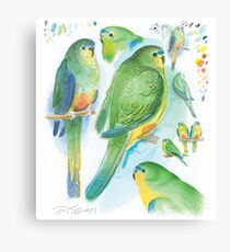 Orange-bellied Parrot Canvas Print