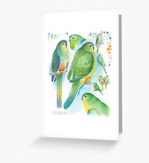 Orange-bellied Parrot Greeting Card