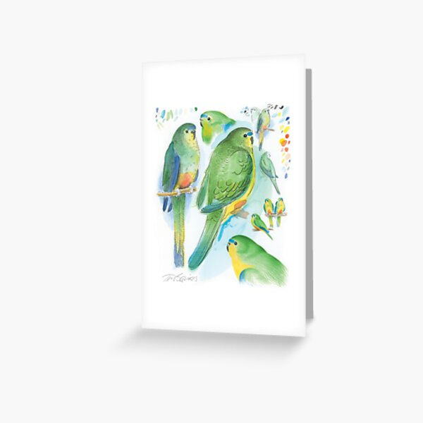 Orange-bellied Parrot Greeting Card