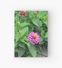 Colorful pink and orange flowers in green leaves bush in the garden. Hardcover Journal