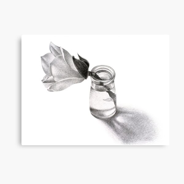 The First Magnolia Metal Print