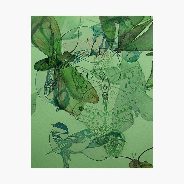 Fairy Grunge Butterfly Mesh Artwork Poster Photographic Print