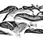 'Shrooms by Victoria Jostes