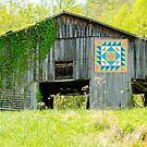 Kentucky Barn Quilt - Thunder and Lightening by Mary Carol Story