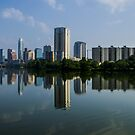 Panorama Reflections of the Austin Skyline by Roschetzky