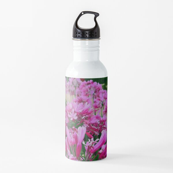 Agapanthus - One Water Bottle
