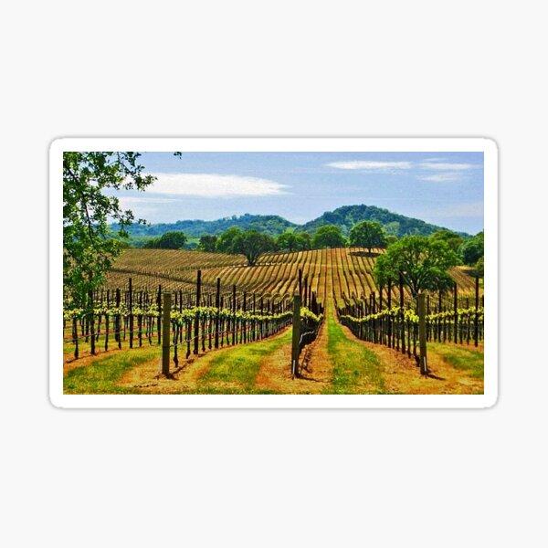 Napa Valley Wine Country Sticker