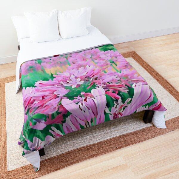 Agapanthus - Five Comforter