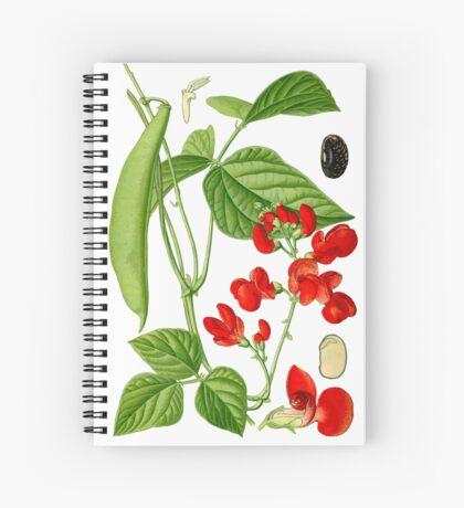 bean Spiral Notebook