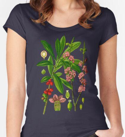 mezereon Women's Fitted Scoop T-Shirt