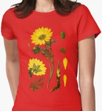 spring adonis Womens Fitted T-Shirt