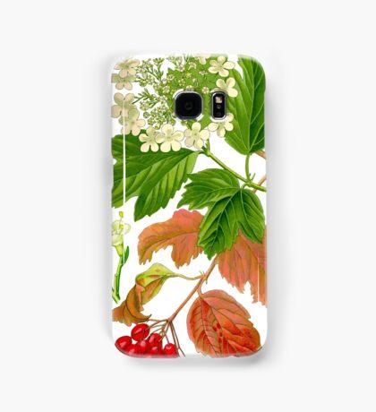 guelder rose Samsung Galaxy Case/Skin