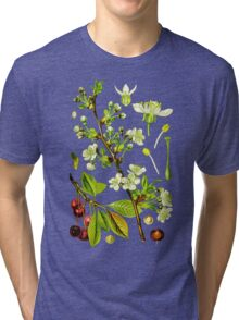 sour cherry Tri-blend T-Shirt