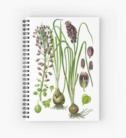 hyacinthe Spiral Notebook