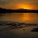 Salt River Serenity by Sue  Cullumber