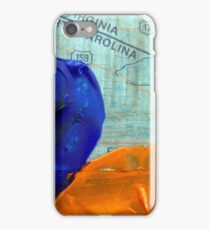 Collage Nr. 4: Great Dismal Swamp iPhone Case/Skin
