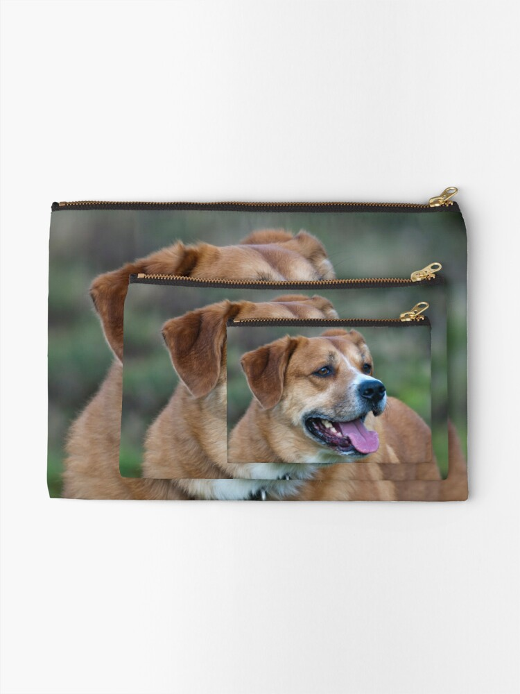 Alternate view of Looking for You Dog Zipper Pouch