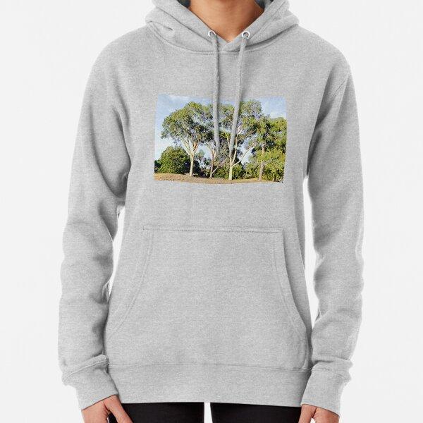 Australian Gum Trees - Seven Pullover Hoodie