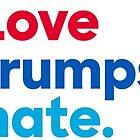 Love Trumps Hate by Peter Vance