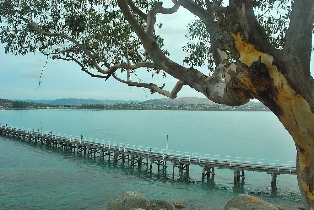 Victor Harbour on a Cloudy day by Penny Smith