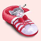 Cat in the shoe by tummeow