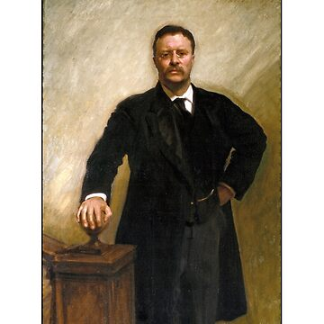 Theodore Roosevelt American President by ozziwar