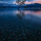 Sunrise at Lake Wanaka by Joel Bramley