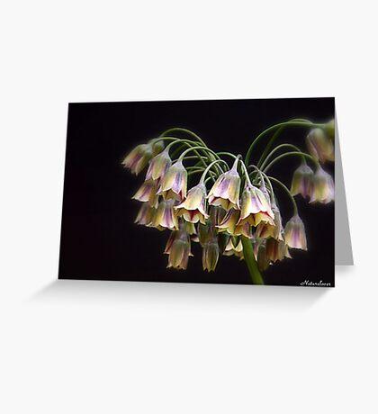 Fairy Bells Greeting Card