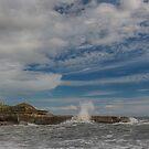 Truman Beach New Zealand by Linda Cutche