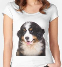 Portrait of Bernese mountain dog puppy Women's Fitted Scoop T-Shirt