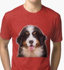 bernese mountain dog puppy Tri-blend T-Shirt