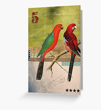 Animal Collection by Elo -- Birds Greeting Card