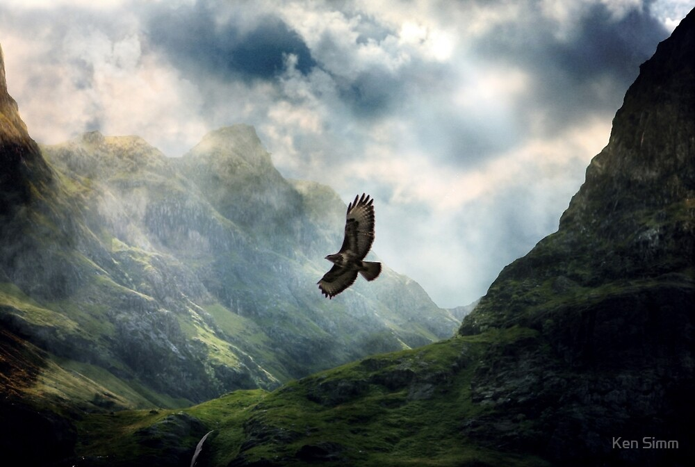 The Light of Flying by Ken Simm