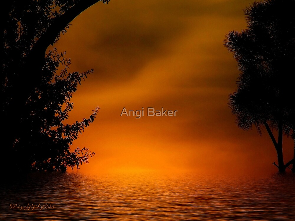 Finding my way back to you by Angi Baker