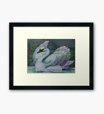 The Swan Also Rises Framed Print