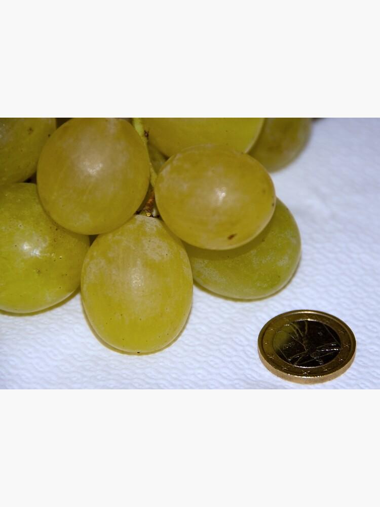Monster Moscato grapes, Bolzano/Bozen, Italy by leemcintyre